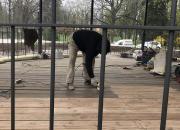 Renovační povrchové úpravy na parkovém altánu v památkově chráněné zóně v Hradci Králové (2017)